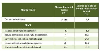 2019. évi munkabalesetek súlyosságuk szerint - vegyiprop.hu